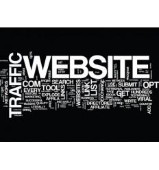 Traffic / Webseiten Besucher 5.000