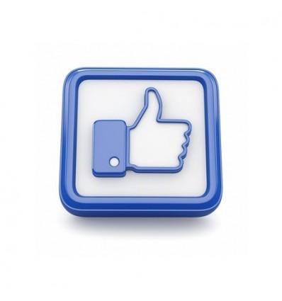 1000 Facebook Fans NON-Turkish
