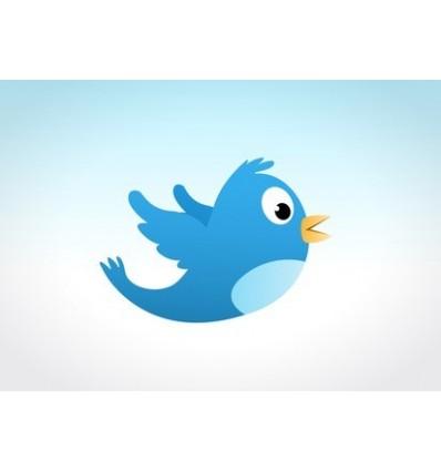 20000 internationale Twitter Follower
