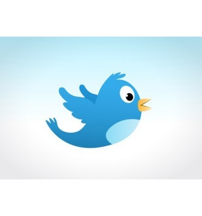 40000 internationale Twitter Follower