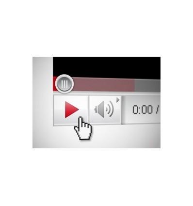 500 YouTube Video Likes